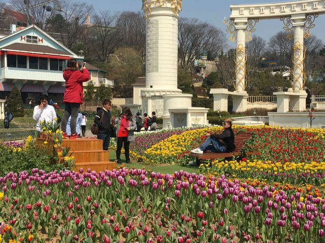 It wouldn't be Korea without a photo op! This was quite the set-up, with a chaise sitting in the tulips and a platform to photograph from!